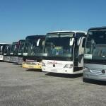 zatamnjivanje-buseva-(3)